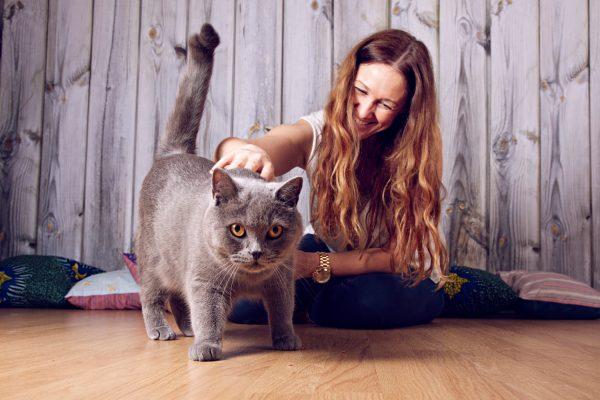 Sesión de fotos con un gato