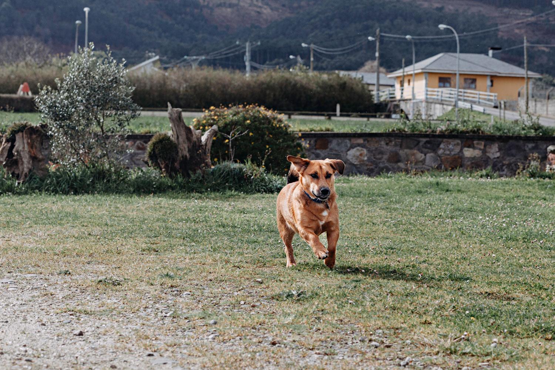 Excursión por Asturias